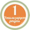 Демеркуризатор №1